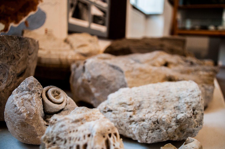 Neolit Kori tűzkőbánya
